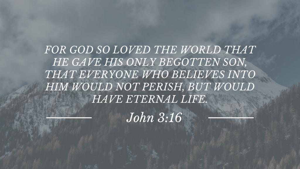 Bible John 3:16